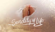 Sanctity of Life Day